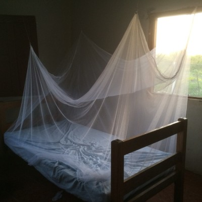 Mosquito nets are absolutely necessary